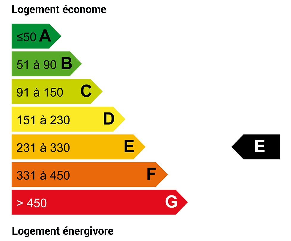DPE énergie : E
